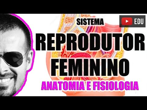 Vídeo Aula 048 - Sistema Reprodutor Feminino: Anatomia funcional dos órgãos genitais femininos