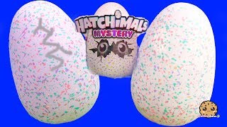 What's Inside ? 2 Interactive Baby Hatchimals Surprise Blind Bag Egg