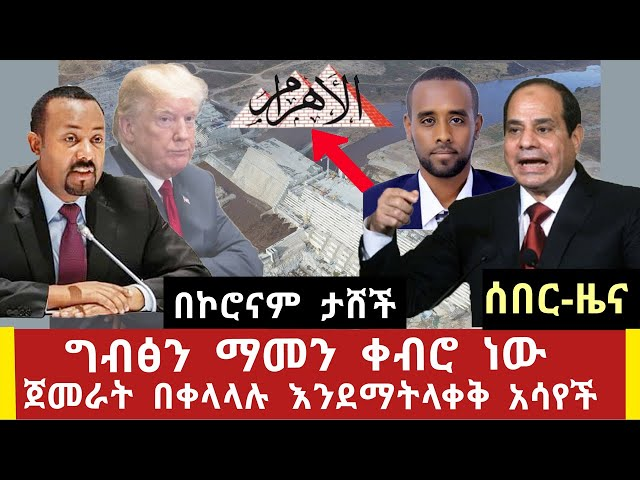 Latest news update may 24 2020 about Egypt