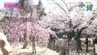 小諸市観光ビデオ(2012製作)