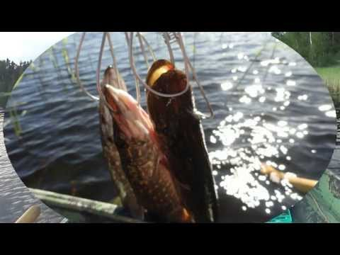 озеро сумки рыбалка