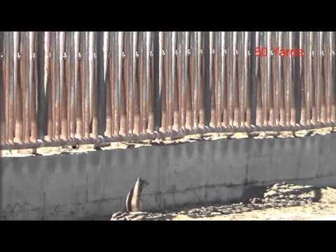 Hatsan Carnivore .30 Hunting
