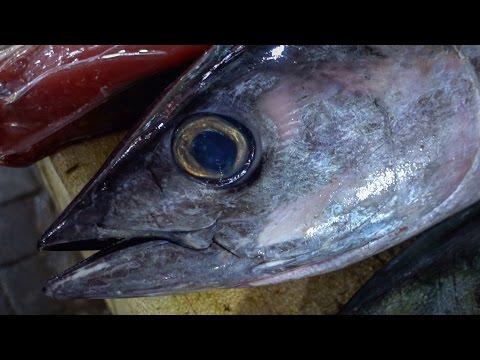 Бали, Рыбный рынок Джимбаран - как выбрать рыбу, цены