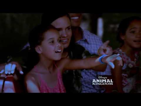 El despertar de la magia | Walt Disney World | Parques Disney