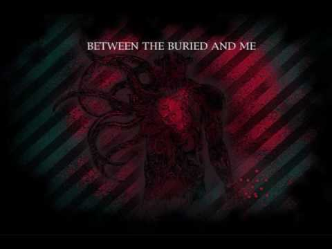 Between The Buried And Me - Reaction