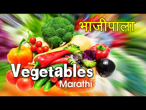 Types Of Vegetables - Animated Video For Kids In Marathi video