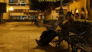 Leon, Mexico. Late night napping ;-) By Ted Amaradidis for 3dmovies.com.