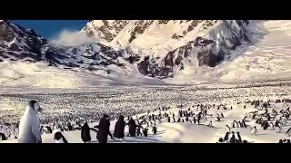 Animation Movies % Walt Disney = Comedy Movies English # Adventure Movies HD