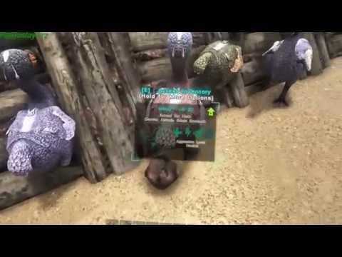Ark How to Farm with Dodos