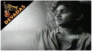 Devadas Movie    ANR & Savitri    Kude Eda Mitha Song