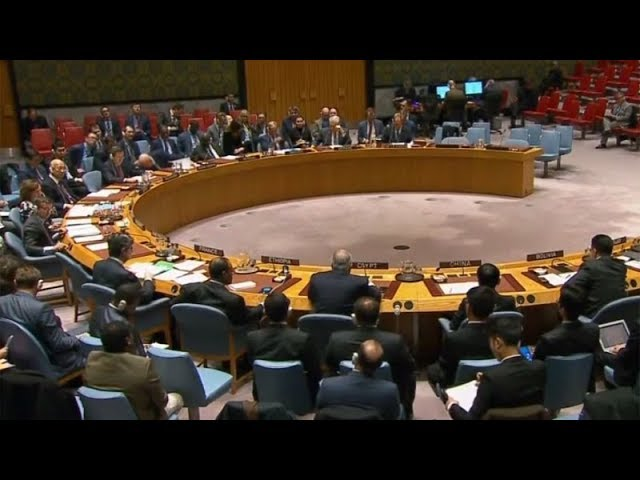 Russia vetoes UN resolution on Syria chemical weapons attacks
