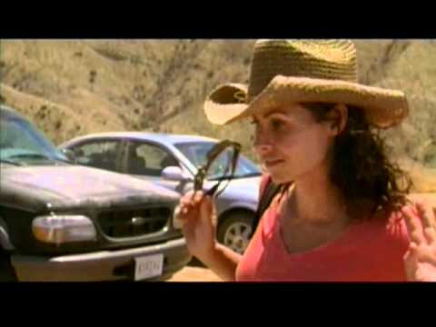 The Virgin of Juarez is listed (or ranked) 24 on the list The Best Minnie Driver Movies