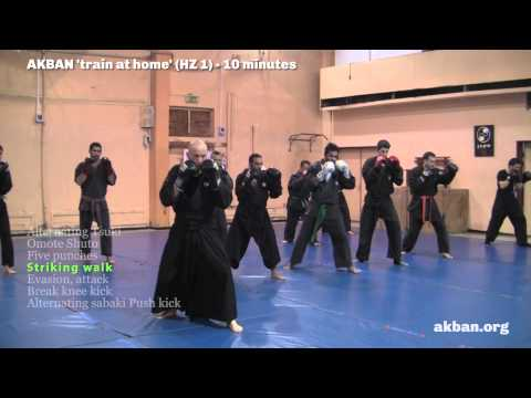 How to do Ninjutsu striking - sabaki basic combos - AKBAN Ninjutsu training Image 1