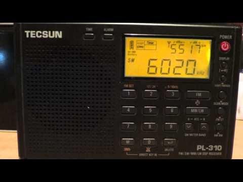 China radio international on Tecsun PL 310 DSP