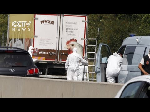 Up to 50 dead migrants found in truck on Austria highway