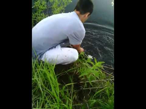 рыбалка костанай где клюет