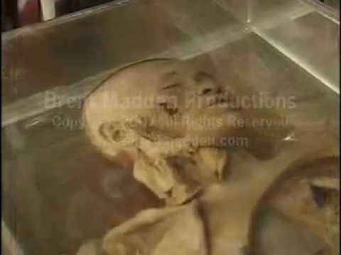 Museum of Death Bangkok, Thailand travel vacation holiday hotel airline fun