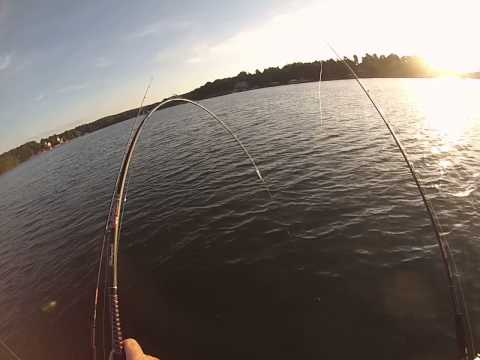 Lake Norman, Fishing For Blue Catfish, August 26, 2014