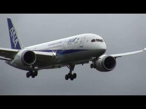 ANA 787 Dreamliner Landing - RAT deployed