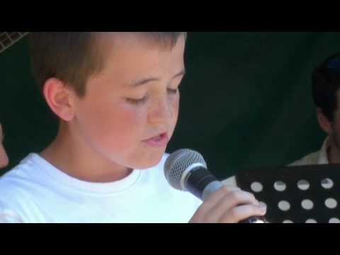 Amazing kid sings Hero