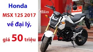 Honda MSX 125 2017 về đại lý, giá 50 triệu đồng