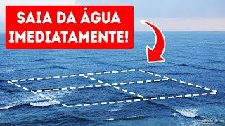 Se Você Entrar Num Mar com Ondas Quadradas, Sua Vida Correrá Perigo!