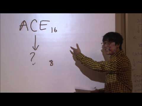 AP Computer Science Video Lecture: Numeral System and Base Conversion