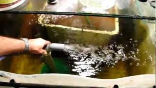Play skb hd fischreiher pl ndert teich leer for Goldfisch miniteich