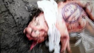 Misterioso animal en un teaser de Neill Blomkamp (el director de Disctrict 9)
