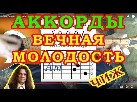Видеоурок Чиж - видео