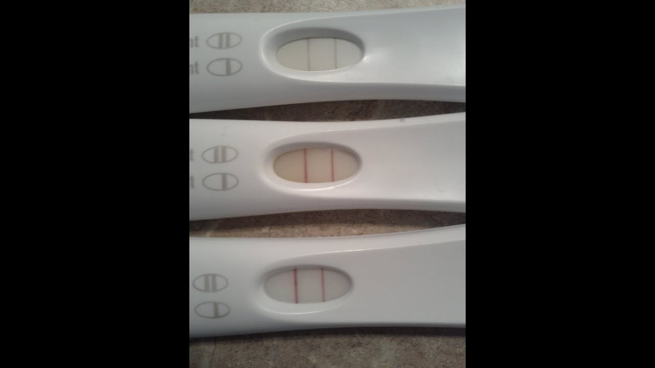 Pregnancy~ Months 1-9 in 74.4 Seconds!