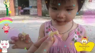 Bé yêu ăn kẹo cá marine boy ngon lành ♡ Phuong Chi Tivi