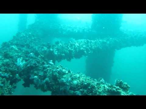 Rig Dive - Freeport Texas