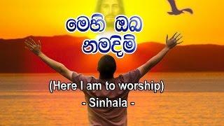 මෙහි ඔබ නමදිම් (Here I Am To Worship - Sinhala)