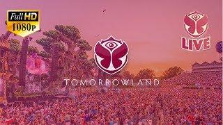 download lagu 🔴 Live Tomorrowland 2017 Mainstage Last Day Alan Walker gratis