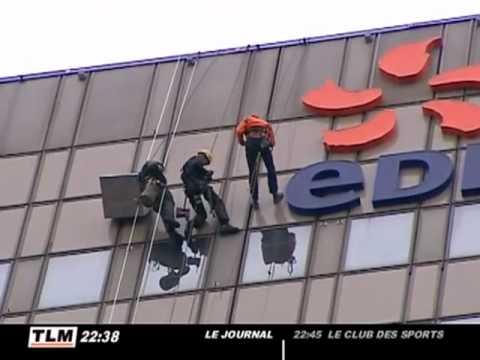 Sauvetage de faucons pèlerins à Lyon
