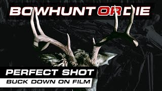 Perfect Shot! Bowhunting With a Decoy - BHOD S09E35