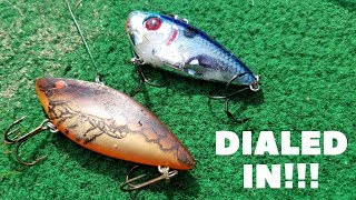 Fall Lipless Crankbait Fishing: Fishing At A Sand Pit Pond