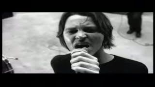 Watch Powderfinger Like A Dog video