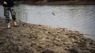 рыбалка на шушме