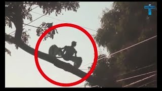 Top 10 Mysterious & Scary Creature Caught On Camera Creepy Unidentified Creatures Videos