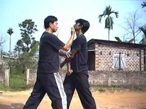 Wing Chun Defensive Techniques and Chum Kiu Image 1