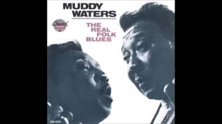 Watch Muddy Waters Walking Blues video