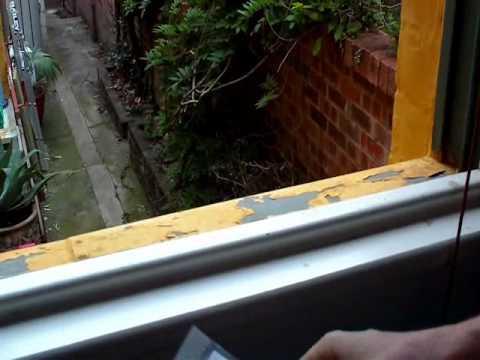 Lead Poisoning DIY Lead (Heavy Metal) Test Kit Result