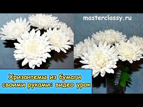 Цветы своими руками из бумаги видео уроки