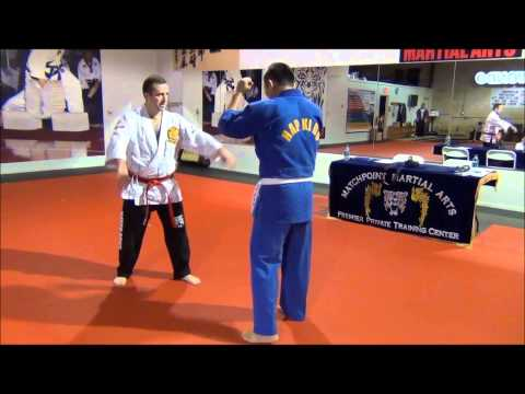Hapkido wrist and elbow locks Image 1