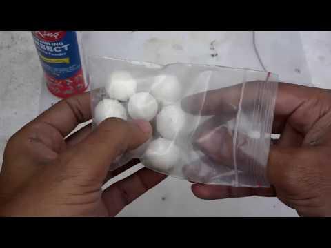 Homemade Pesticide Spray   Homemade Bug Killer For Birds+Plants (Urdu/Hindi)