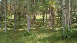 Land for sale in Costa Rica, Perez Zeledon - 3130