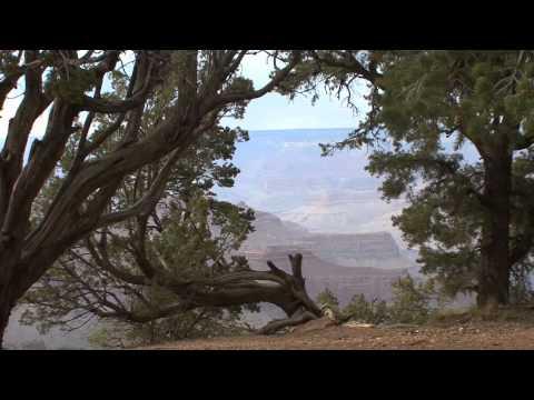 Drug Rehab Arizona | Best Drug Rehab Arizona Information