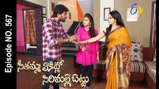 Seethamma Vakitlo Sirimalle Chettu | 28th June 2017 | Full Episode No 567 | ETV Telugu